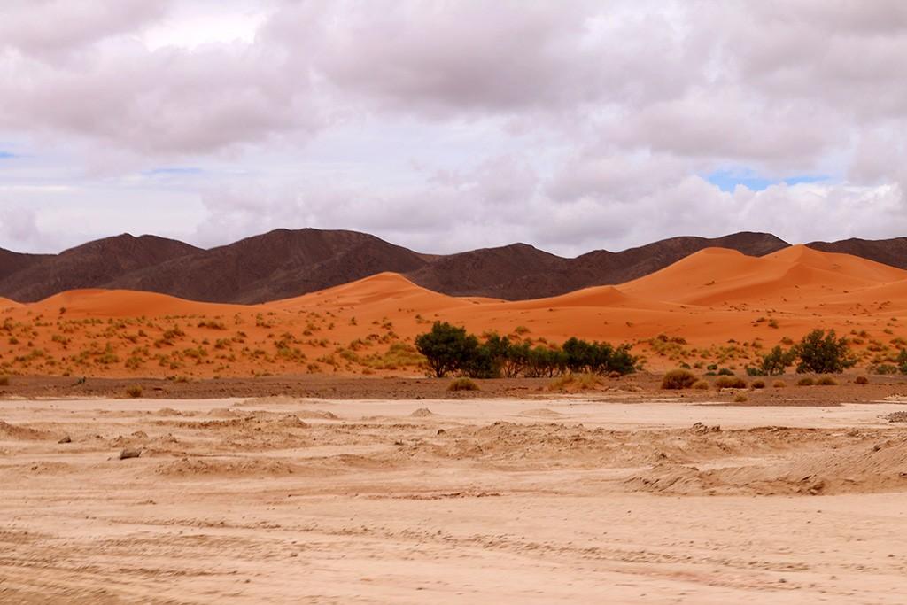 IMG_2743 homokdűnék